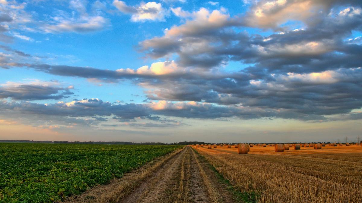 Agro: stimulans omschakeling verduurzaming
